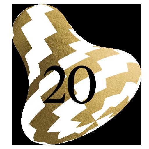 20.12.2020